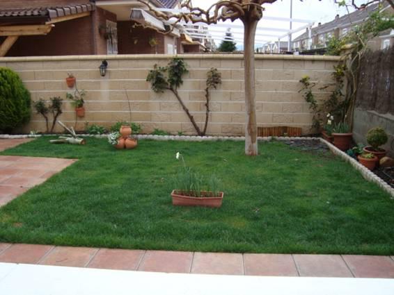 Quitar una parte toda de c sped y con qu plantas dise o for Diseno de jardines pequenos sin cesped