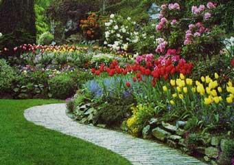 Dise ar y definir mi jard n - Disenar mi jardin ...