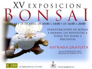 Exposición Club Bonsai Vigo marzo 2012. Jdv1334311313o