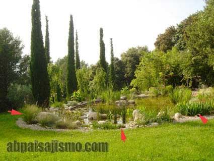 Remodelar jard n en sevilla p gina 2 for Como remodelar mi jardin