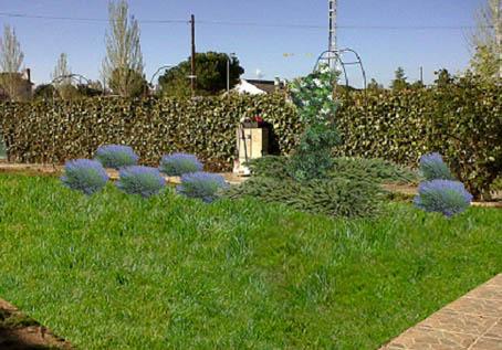 Dise ar y definir mi jard n p gina 3 foro de infojard n - Disenar mi jardin ...