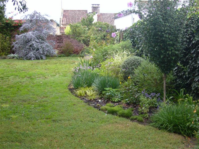 Arboles y arbustos para parquizar en argentina y for Cafres este jardin