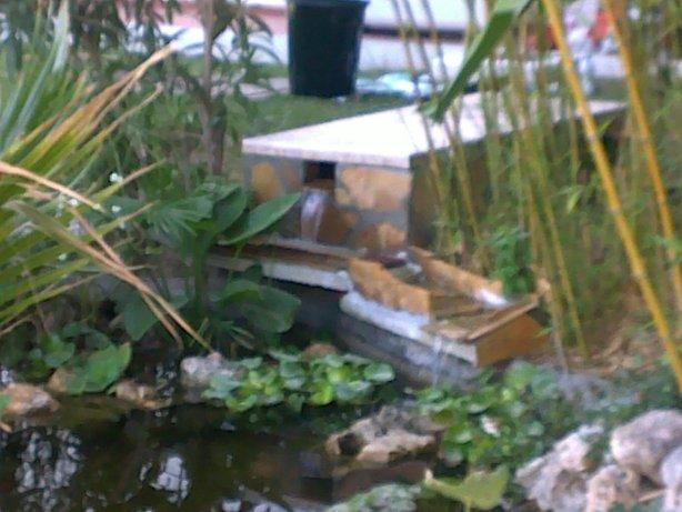 Filtro casero hemos hecho para un estanque de kois fotos for Fotos de estanques