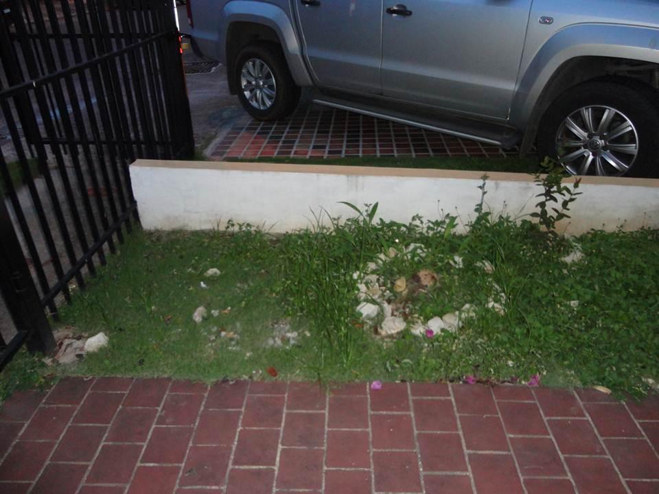 Microjard n de entrada de 1 metro de ancho for Ancho puerta entrada casa