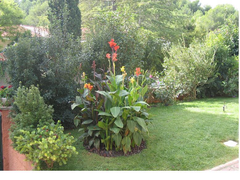 Ayuda para dise ar mi jard n san lu s argentina p gina 3 - Disenar mi jardin ...