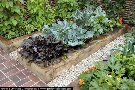 Ayuda con el dise o de mi jard n for Arriate jardin