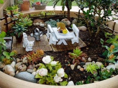 Jard n miniatura en un lebrillo con mueblecitos fotos for Jardines japoneses en miniatura
