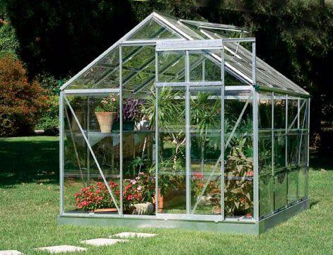 Invernadero for Plantas para invernadero