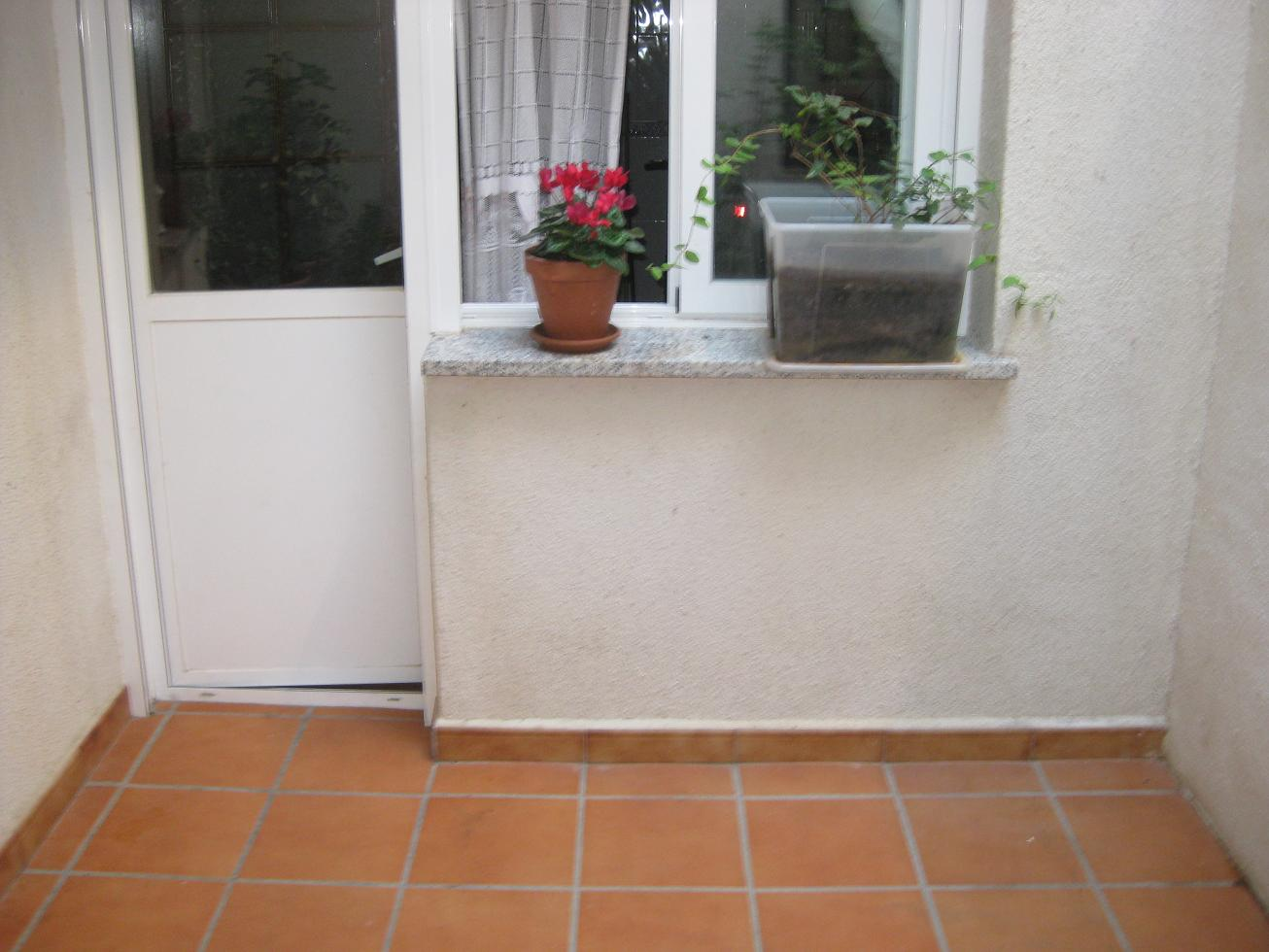 Ayuda para jard n en patio interior en un bajo en for Patio de luces normativa