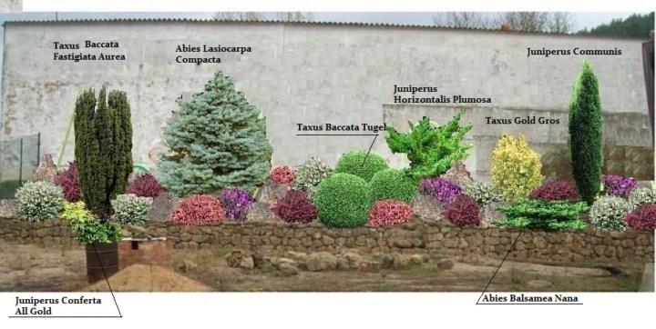 Nuevo proyecto de jard n en burgos de 3000 mts 2 p gina 9 for Jardines de bajo mantenimiento