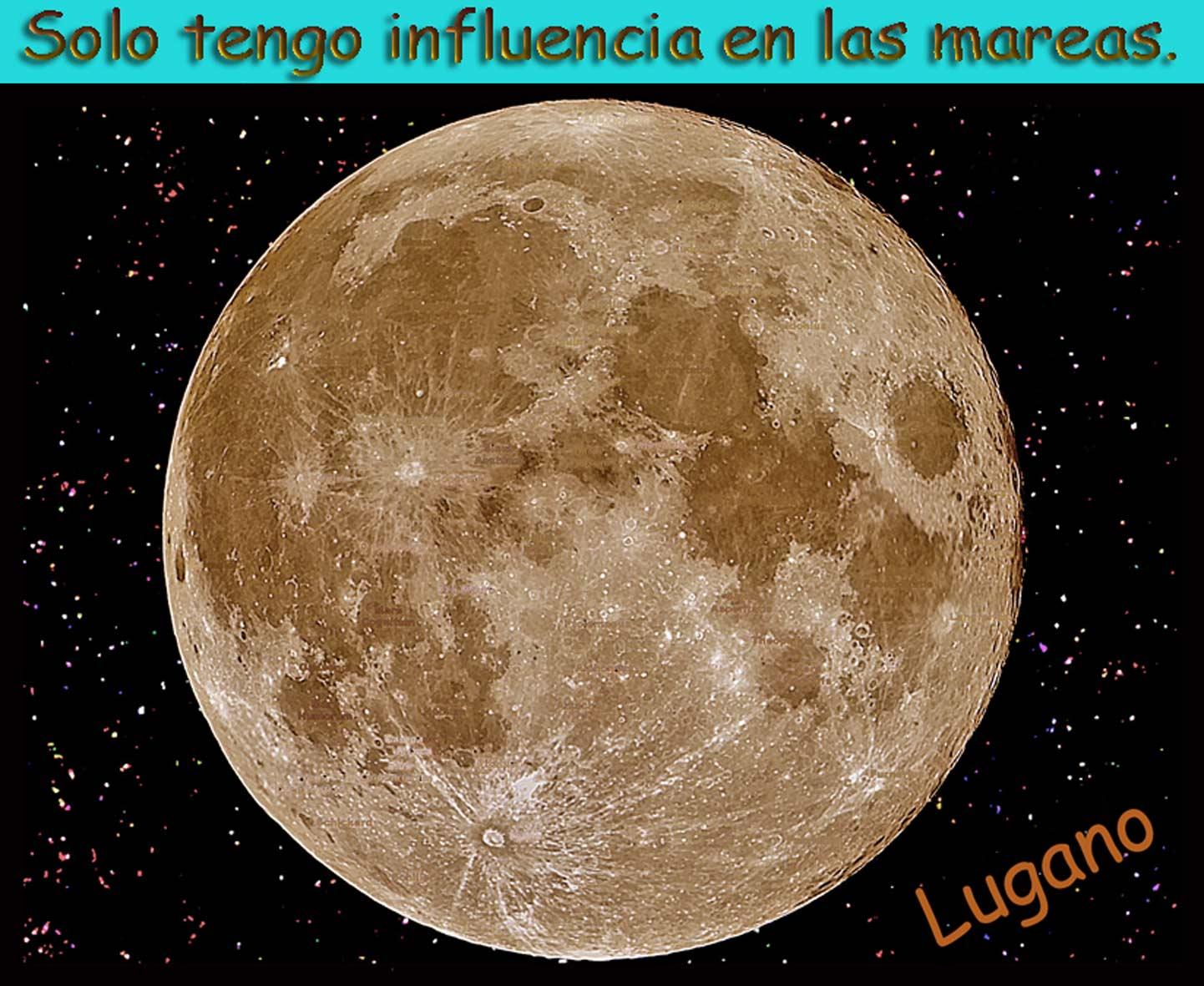 Cu ndo podar frutales con luna meguante o luna creciente Cuando hay luna creciente