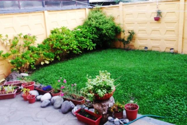 Quiero hacer una mini rocalla for Como puedo arreglar mi jardin pequeno