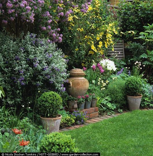 Quiero hacer un jardn frondoso foro de infojardn for Arbol de sombra para jardin