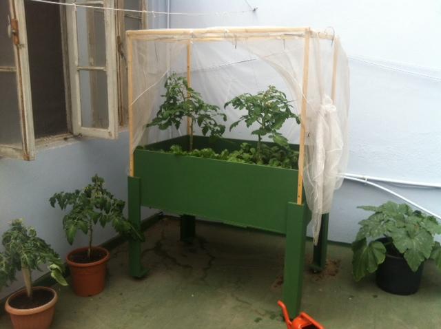 Mesa de cultivo urbana casera fotos de la m a con las for Mesa de cultivo casera