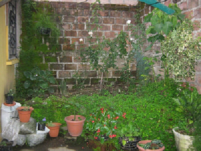 Como decorar mi peque a terraza y jard n interior trasero - Decorar mi jardin ...
